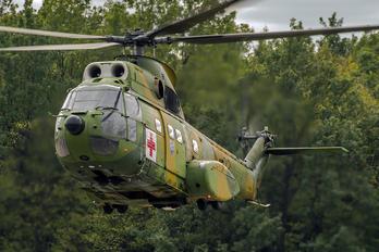 02 - Romania - Air Force IAR Industria Aeronautică Română IAR 330 Puma
