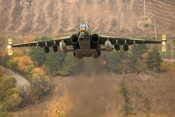 246 - Bulgaria - Air Force Sukhoi Su-25K