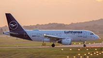 D-AILM - Lufthansa Airbus A319 aircraft