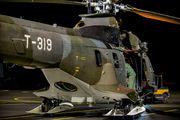 Switzerland - Air Force T-319 image