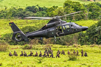 EB2006 - Brazil - Army Eurocopter AS365 Panther