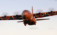 Canadian Air Force CC-130 visited Seville title=