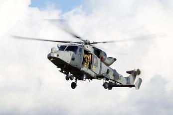 ZZ512 - Royal Navy: Royal Marines Agusta Westland AW159 Lynx Wildcat AH.1
