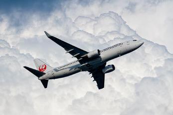 JA317J - JAL - Japan Airlines Boeing 737-800