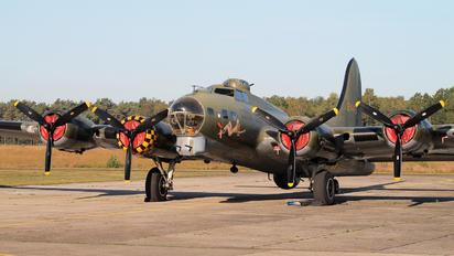 G-BEDF - B17 Preservation Boeing B-17G Flying Fortress