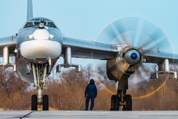 RF-94178 - Russia - Air Force Tupolev Tu-95MS