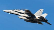 15-75 - Spain - Air Force McDonnell Douglas CF-188B Hornet aircraft