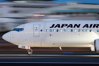 JA318J - JAL - Japan Airlines Boeing 737-800