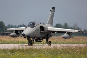 MM7170 - Italy - Air Force AMX International A-11 Ghibli