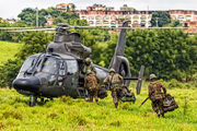 EB2006 - Brazil - Army Eurocopter AS365 Panther aircraft