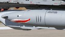 Poland - Air Force 3816 image