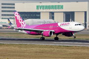Peach Aviation JA828P image