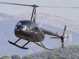 F-HELI - Private Robinson R44 Astro / Raven aircraft