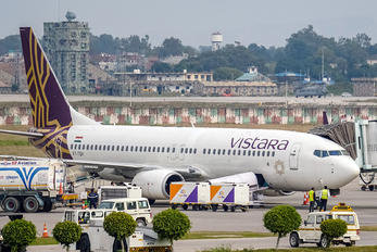 VT-TGH - Vistara Boeing 737-8AL(WL)