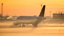 D-AILS - Lufthansa Airbus A319 aircraft