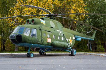 75 - Russia - Federal Border Guard Service Mil Mi-8T