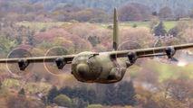 ZH875 - Royal Air Force Lockheed Hercules C.4 aircraft