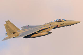 42-8843 - Japan - Air Self Defence Force Mitsubishi F-15J