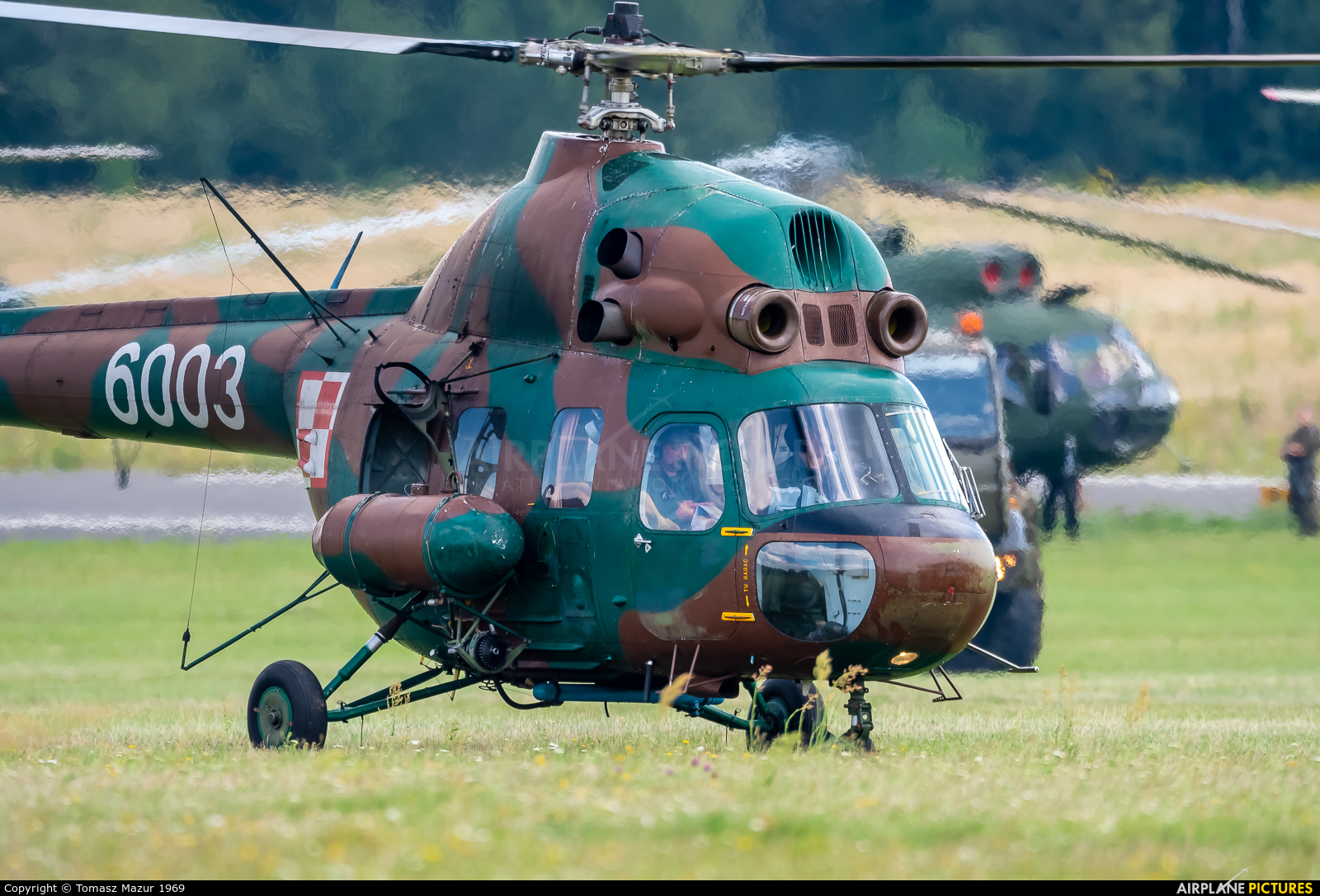 Poland - Army 6003 aircraft at Katowice Muchowiec