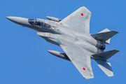 Japan - Air Self Defence Force 12-8928 image