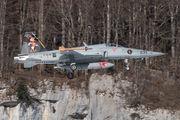 J-3033 - Switzerland - Air Force Northrop F-5E Tiger II aircraft