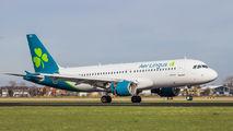 EI-DES - Aer Lingus Airbus A320 aircraft
