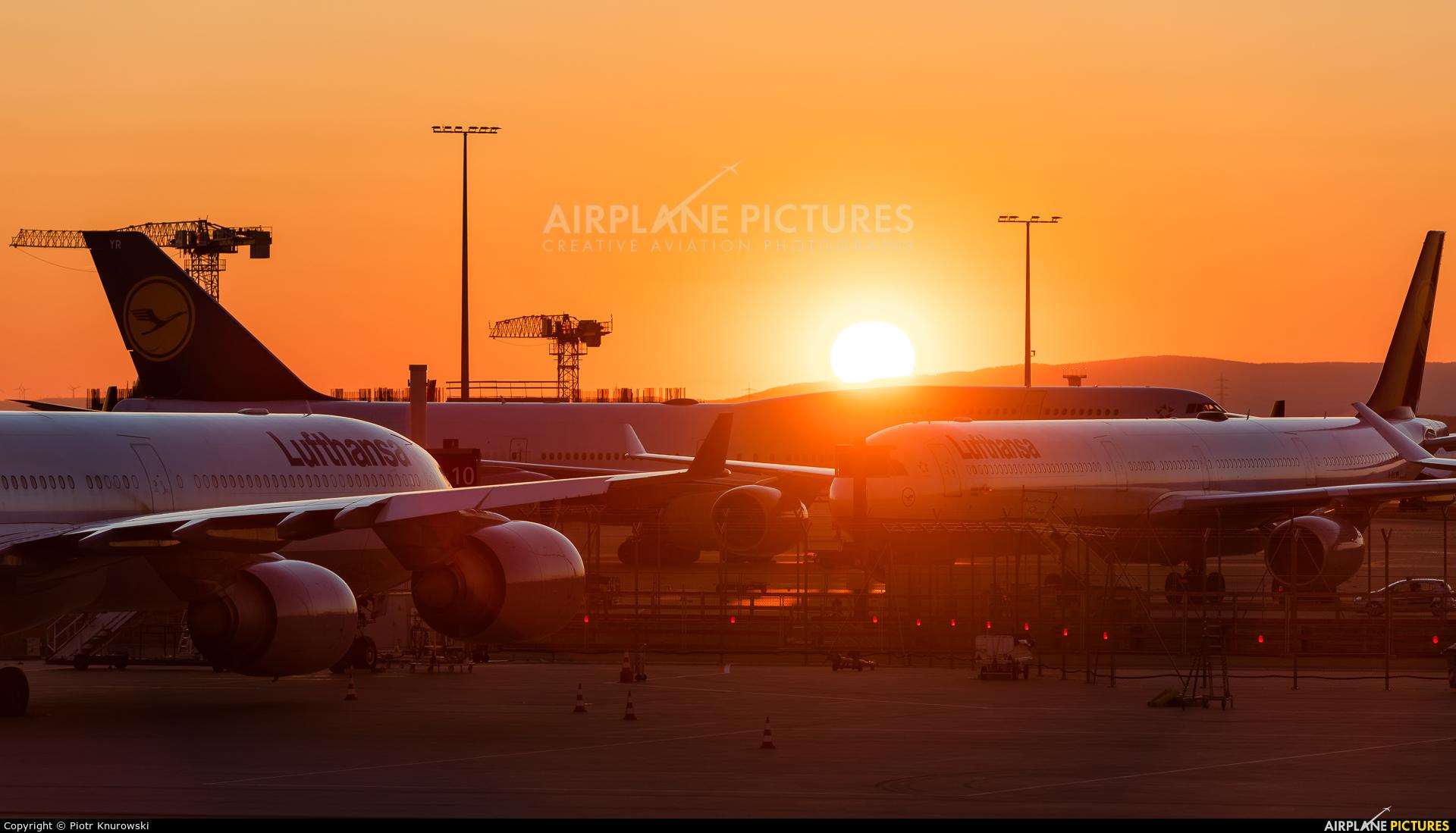 Lufthansa D-AIHP aircraft at Frankfurt