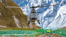 T-333 - Switzerland - Air Force Aerospatiale AS532 Cougar aircraft