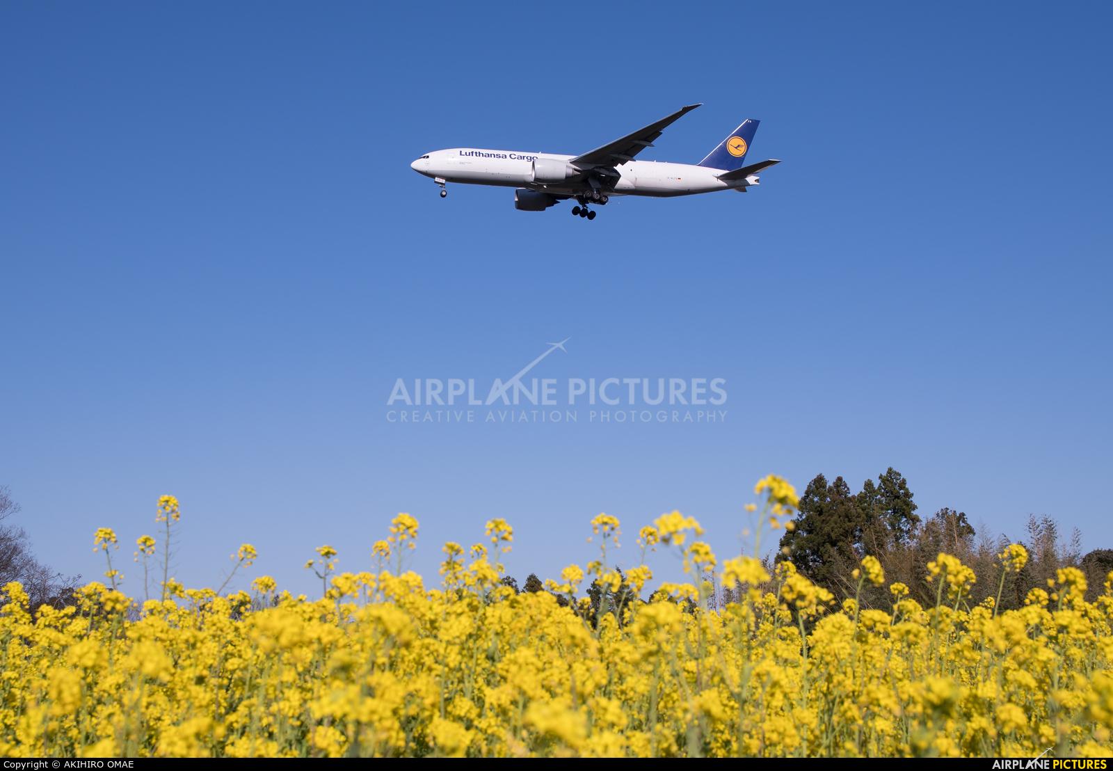 Lufthansa Cargo D-ALFD aircraft at Tokyo - Narita Intl