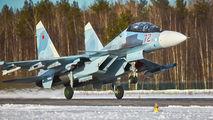 72 - Russia - Air Force Sukhoi Su-30SM aircraft