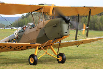 N-9503 - Private de Havilland DH. 82 Tiger Moth