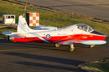XW354 - Private Hunting Percival Jet Provost