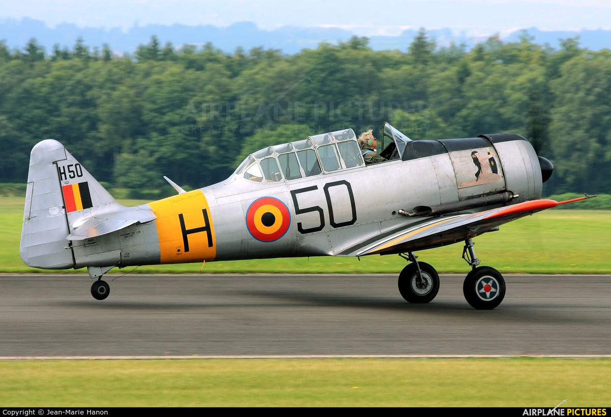 Private OO-DAF aircraft at Spa - La Sauveniere