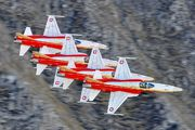 J-3090 - Switzerland - Air Force: Patrouille Suisse Northrop F-5E Tiger II aircraft
