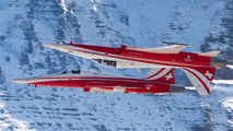 J-3085 - Switzerland - Air Force: Patrouille Suisse Northrop F-5E Tiger II aircraft