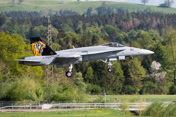 J-5011 - Switzerland - Air Force McDonnell Douglas F-18C Hornet