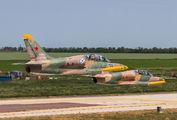 RF-34124 - Russia - Navy Aero L-39 Albatros aircraft