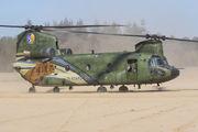 D-666 - Netherlands - Air Force Boeing CH-47D Chinook aircraft