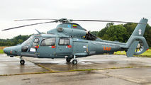 41 - Lithuania - Air Force Eurocopter AS365 Dauphin 2 aircraft
