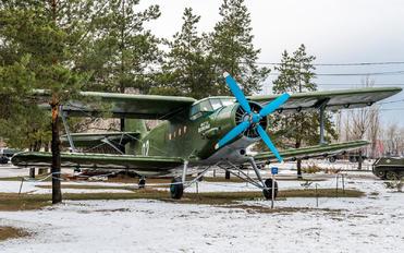 02 - DOSAAF / ROSTO Antonov An-2