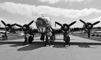 N3193G - Yankee Air Force Boeing B-17G Flying Fortress aircraft