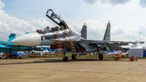 01 - Russia - Air Force Sukhoi Su-30SM aircraft