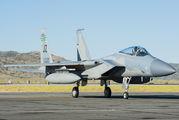 80-0029 - USA - Air National Guard McDonnell Douglas F-15C Eagle aircraft