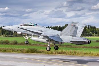 HN-462 - Finland - Air Force McDonnell Douglas F/A-18D Hornet