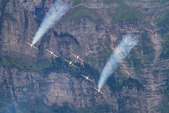 - - Switzerland - Air Force: Patrouille Suisse Northrop F-5E Tiger II