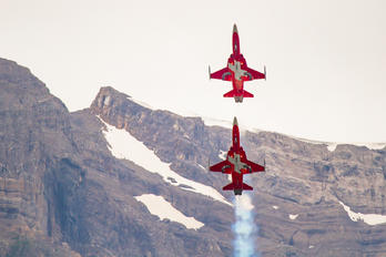 J-3082 - Switzerland - Air Force: Patrouille Suisse Northrop F-5E Tiger II