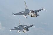 FA-134 - Belgium - Air Force General Dynamics F-16AM Fighting Falcon aircraft