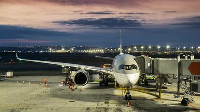 - - Qatar Airways - Airport Overview - Aircraft Detail