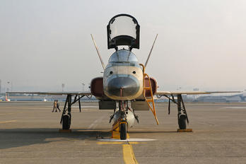 3-7368 - Iran - Islamic Republic Air Force Northrop F-5E Saeghe