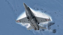 J-5018 - Switzerland - Air Force McDonnell Douglas F/A-18C Hornet aircraft
